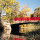 The Red Bridge at the entryway to Carthage's campus, pictured in fall.